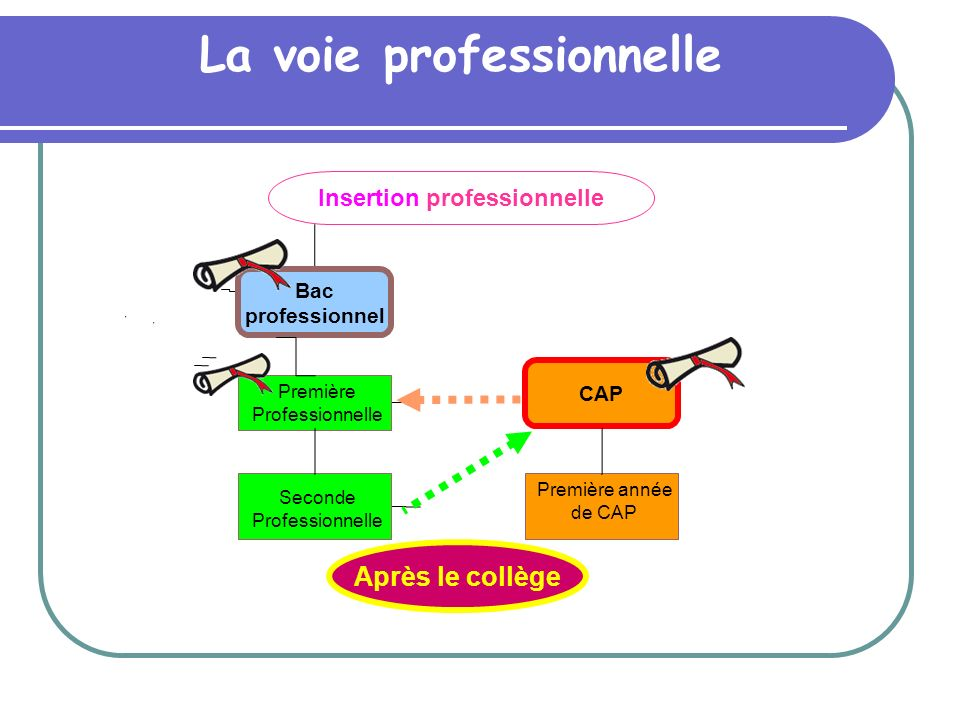 La voie professionnelle Insertion professionnelle