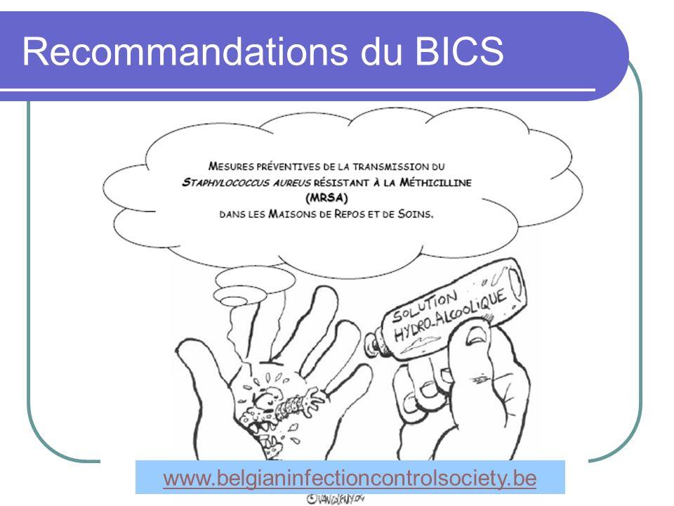 Recommandations du BICS