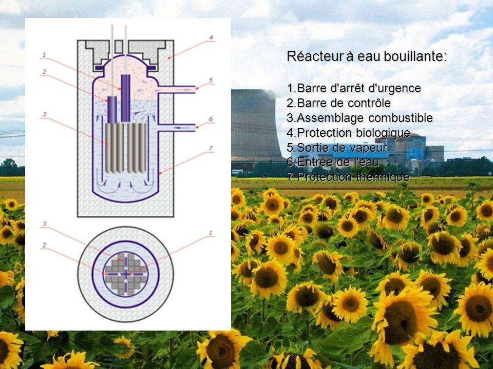 Réacteur à eau bouillante: