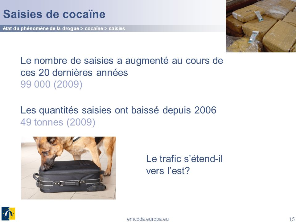 Saisies de cocaïne état du phénomène de la drogue > cocaïne > saisies.