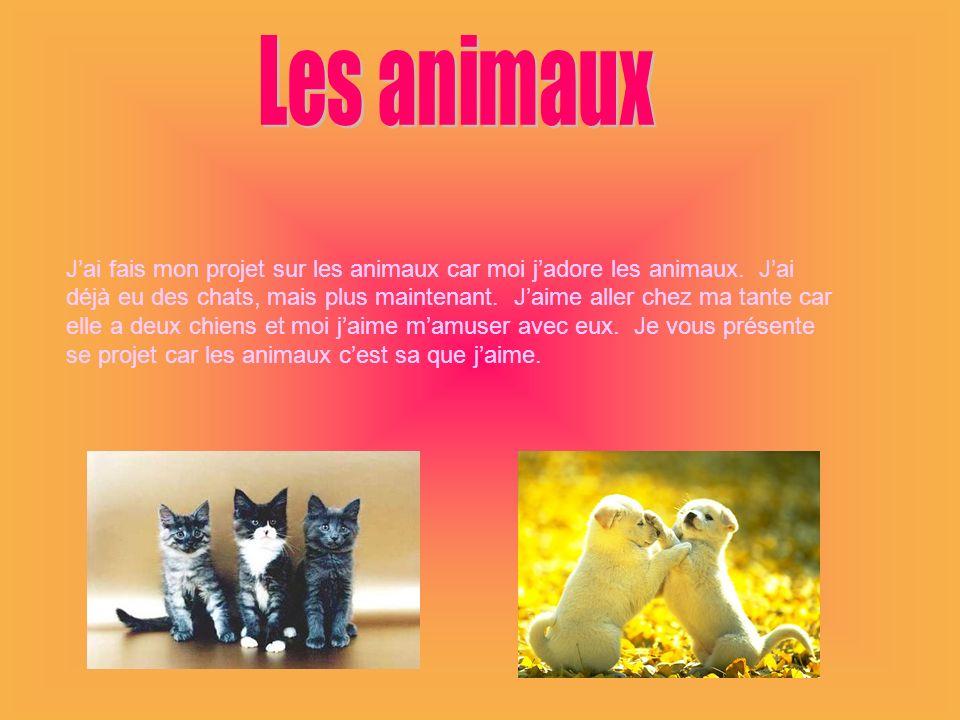 Les animaux J'ai fais mon projet sur les animaux car moi j'adore les animaux. J'ai.