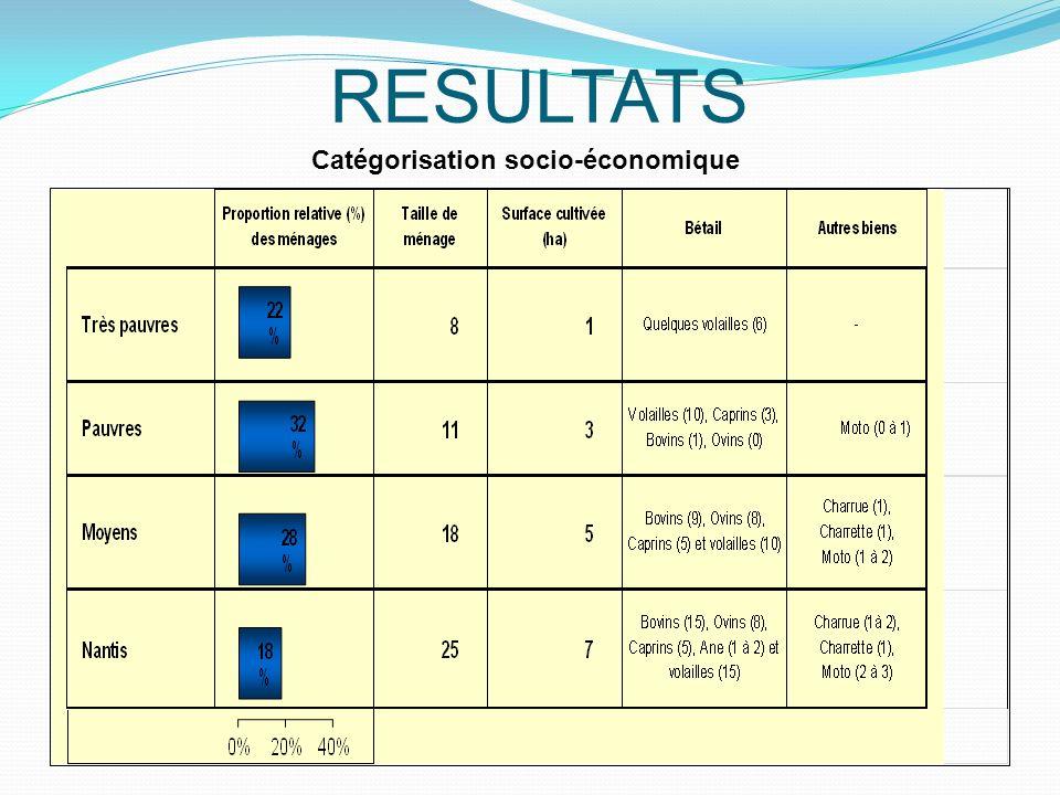 Catégorisation socio-économique