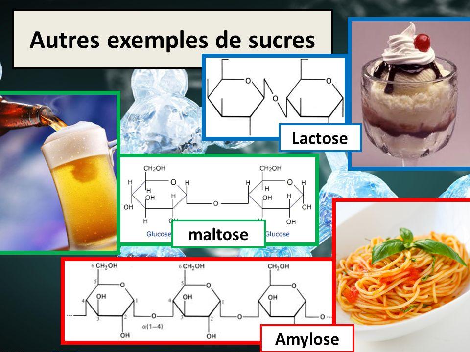 Autres exemples de sucres