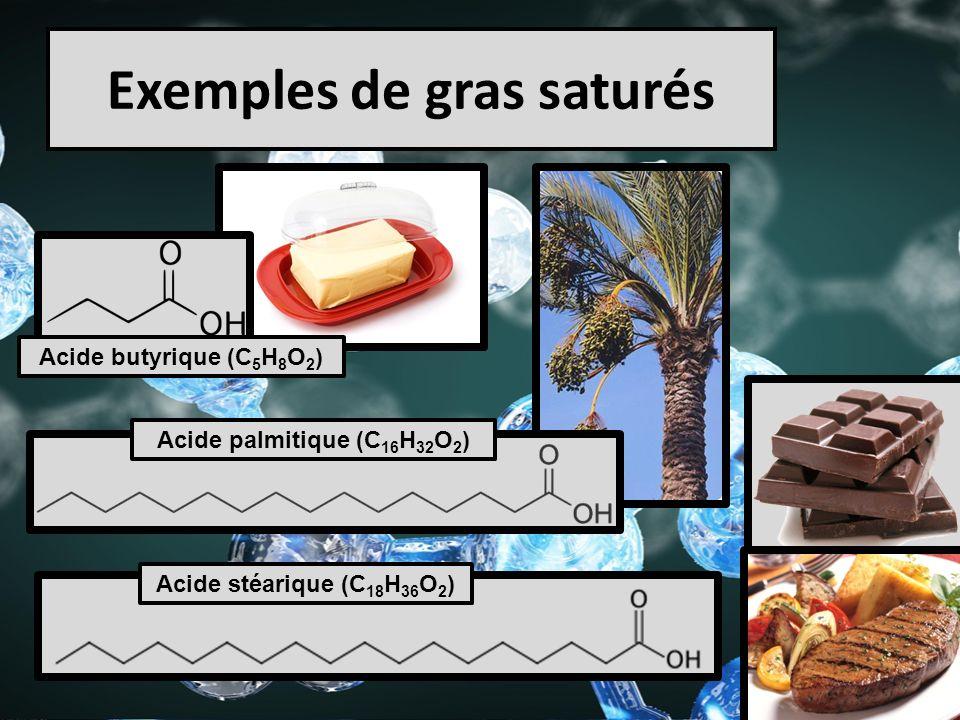 Exemples de gras saturés
