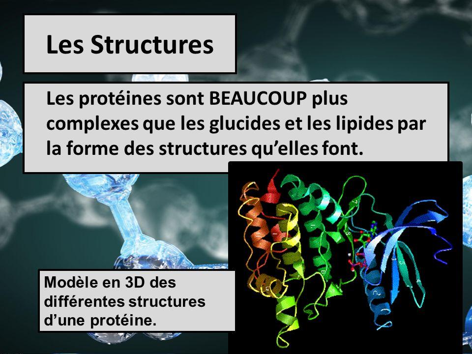 Les Structures Les protéines sont BEAUCOUP plus complexes que les glucides et les lipides par la forme des structures qu'elles font.