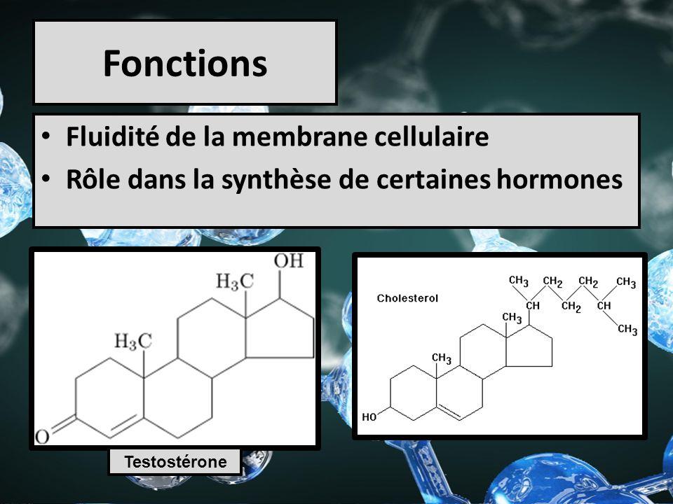 Fonctions Fluidité de la membrane cellulaire