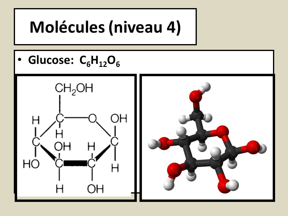 Molécules (niveau 4) Glucose: C6H12O6