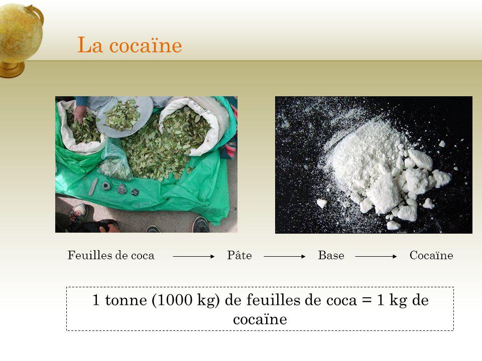 1 tonne (1000 kg) de feuilles de coca = 1 kg de cocaïne