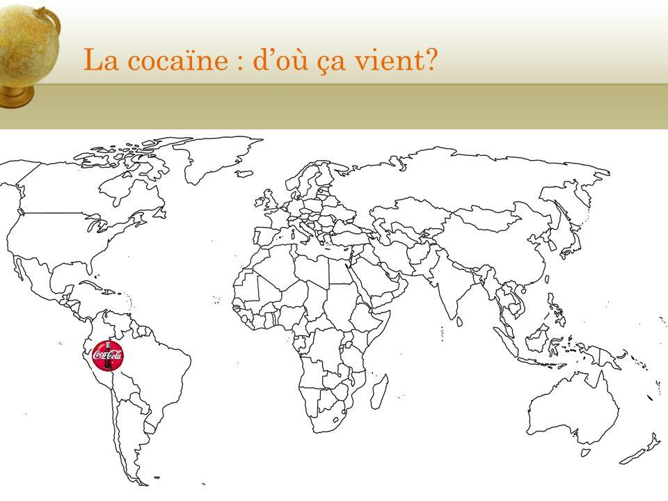 La cocaïne : d'où ça vient