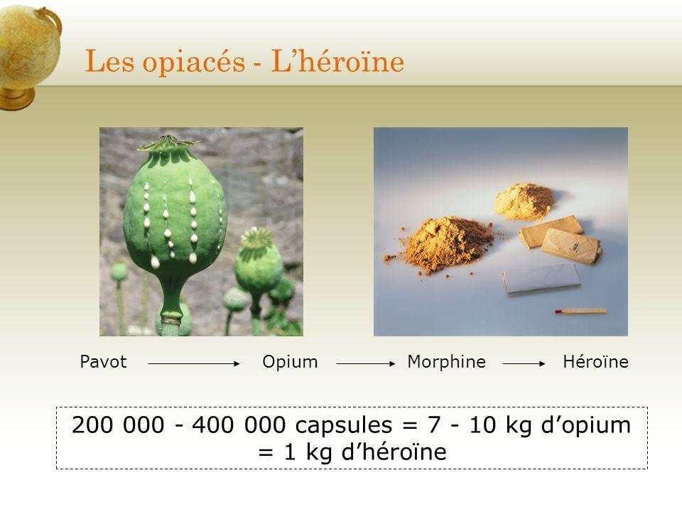 Les opiacés - L'héroïne