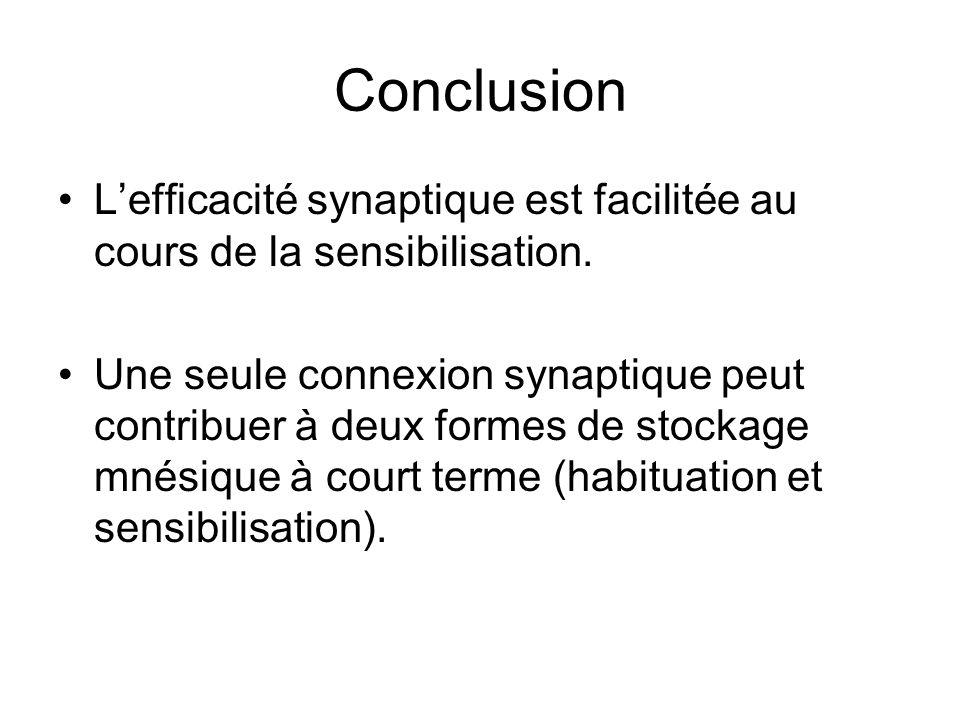 Conclusion L'efficacité synaptique est facilitée au cours de la sensibilisation.
