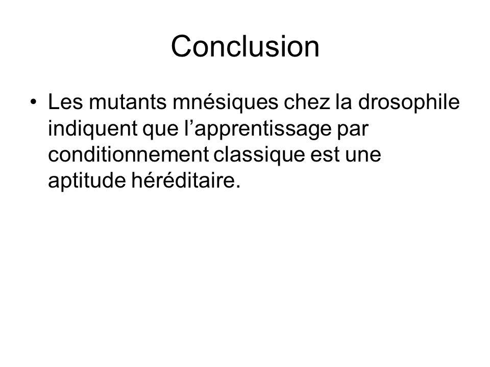 Conclusion Les mutants mnésiques chez la drosophile indiquent que l'apprentissage par conditionnement classique est une aptitude héréditaire.