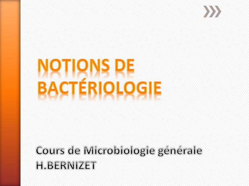 Cours de Microbiologie générale H.BERNIZET