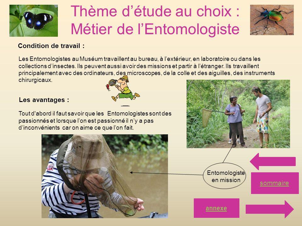Thème d'étude au choix : Métier de l'Entomologiste