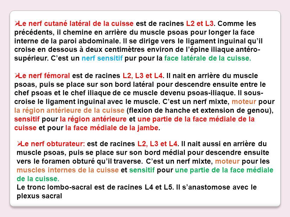 Le nerf cutané latéral de la cuisse est de racines L2 et L3