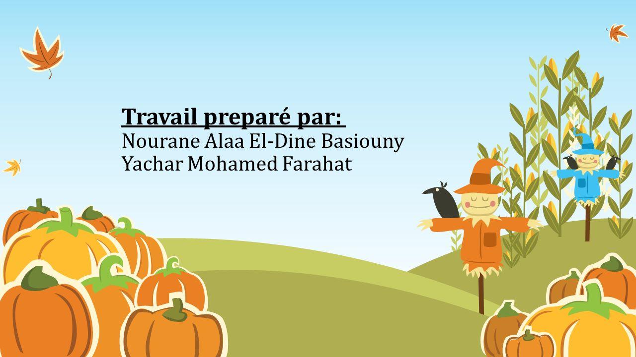 Travail preparé par: Nourane Alaa El-Dine Basiouny Yachar Mohamed Farahat