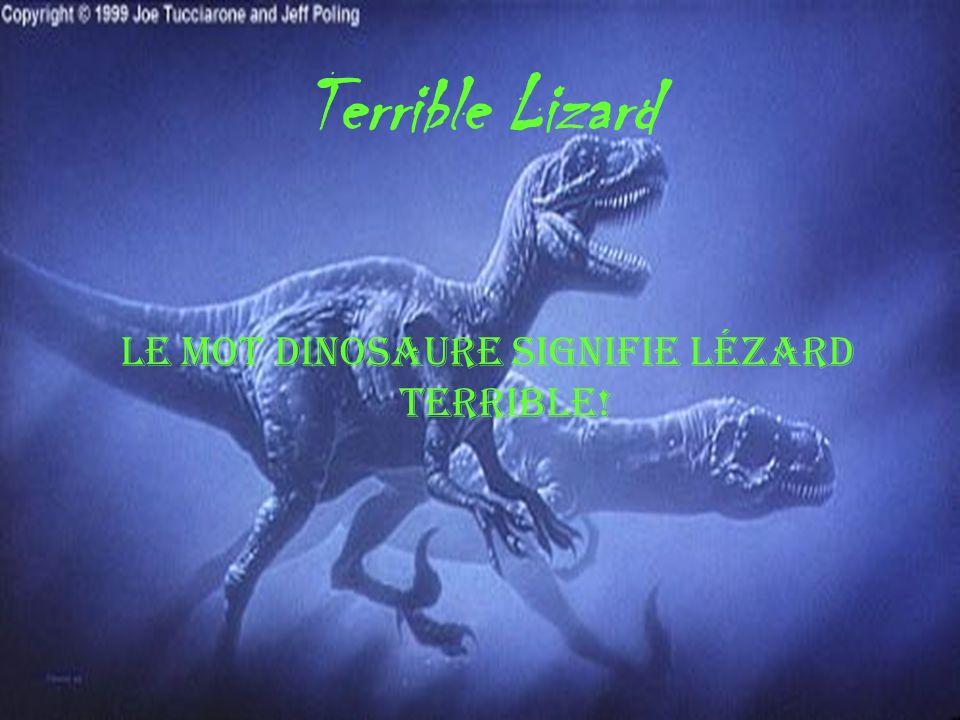 Le mot dinosaure signifie lézard terrible!