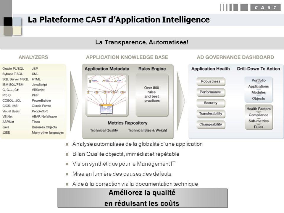 La Plateforme CAST d'Application Intelligence