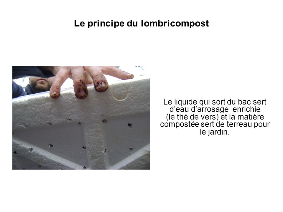 Le principe du lombricompost