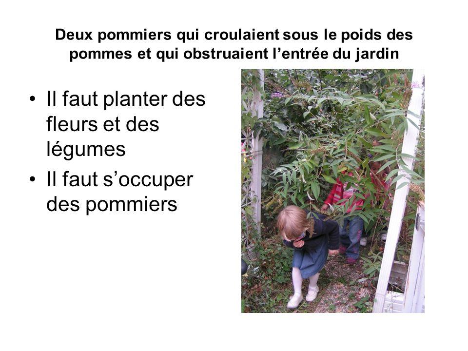Il faut planter des fleurs et des légumes