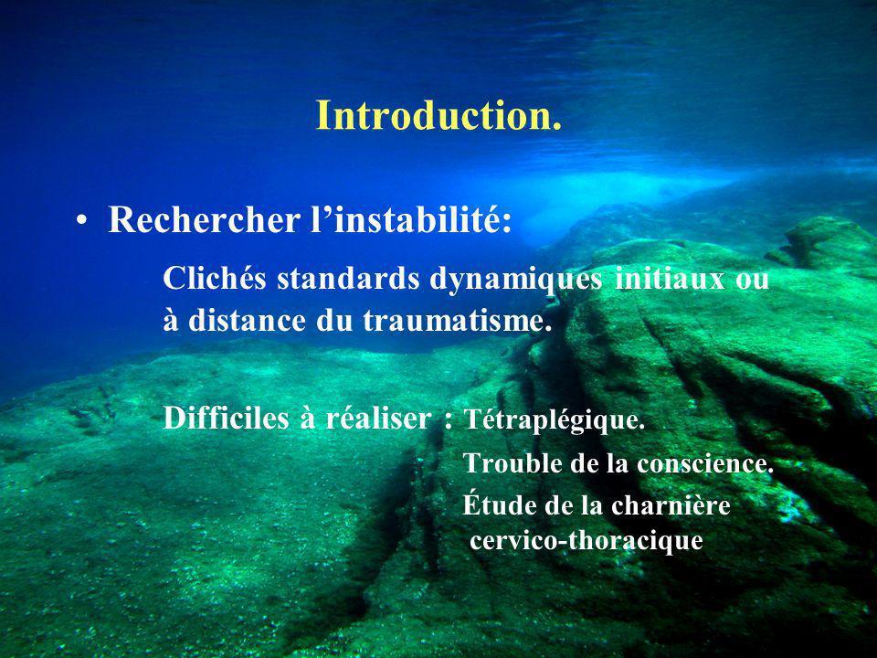 Introduction. Rechercher l'instabilité: