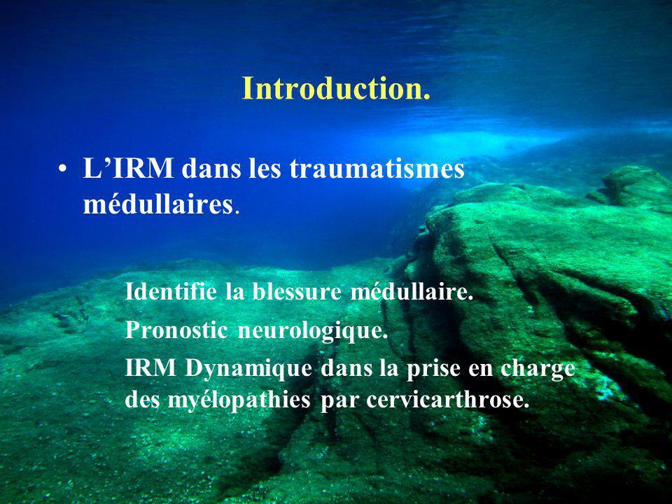 Introduction. L'IRM dans les traumatismes médullaires.