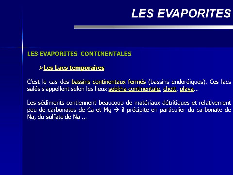 LES EVAPORITES LES EVAPORITES CONTINENTALES Les Lacs temporaires