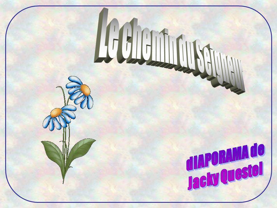 Le chemin du Seigneur dIAPORAMA de Jacky Questel