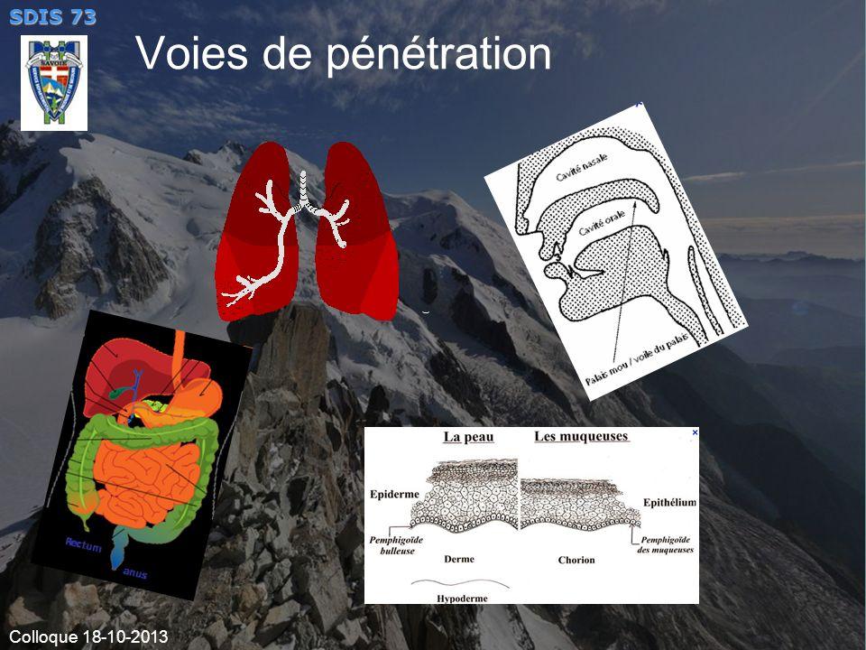 Voies de pénétration VOIES DE PENETRATION Nez – épithélium nasal