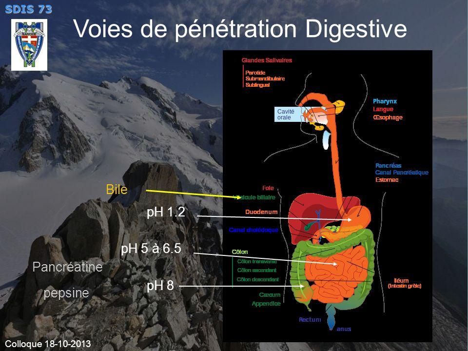 Voies de pénétration Digestive