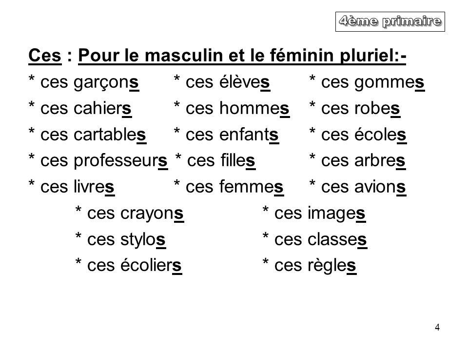 4ème primaire Ces : Pour le masculin et le féminin pluriel:-