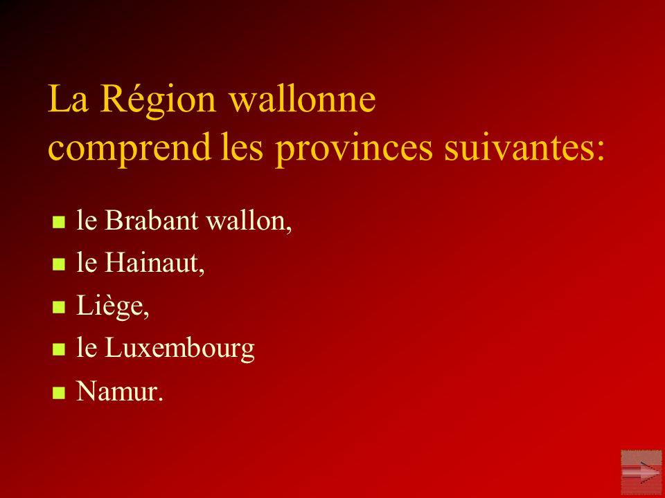 La Région wallonne comprend les provinces suivantes: