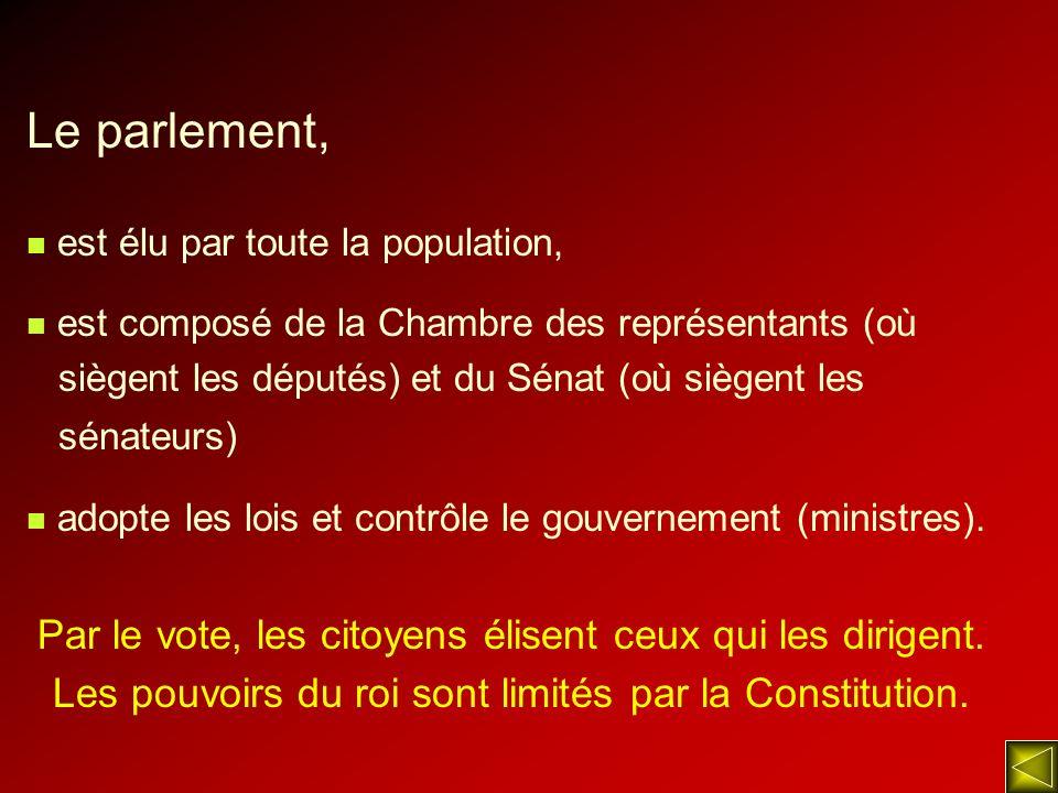 Le parlement, Par le vote, les citoyens élisent ceux qui les dirigent.