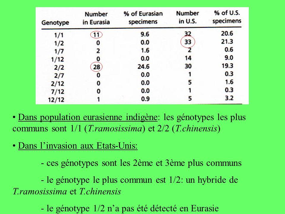 • Dans population eurasienne indigène: les génotypes les plus communs sont 1/1 (T.ramosissima) et 2/2 (T.chinensis)