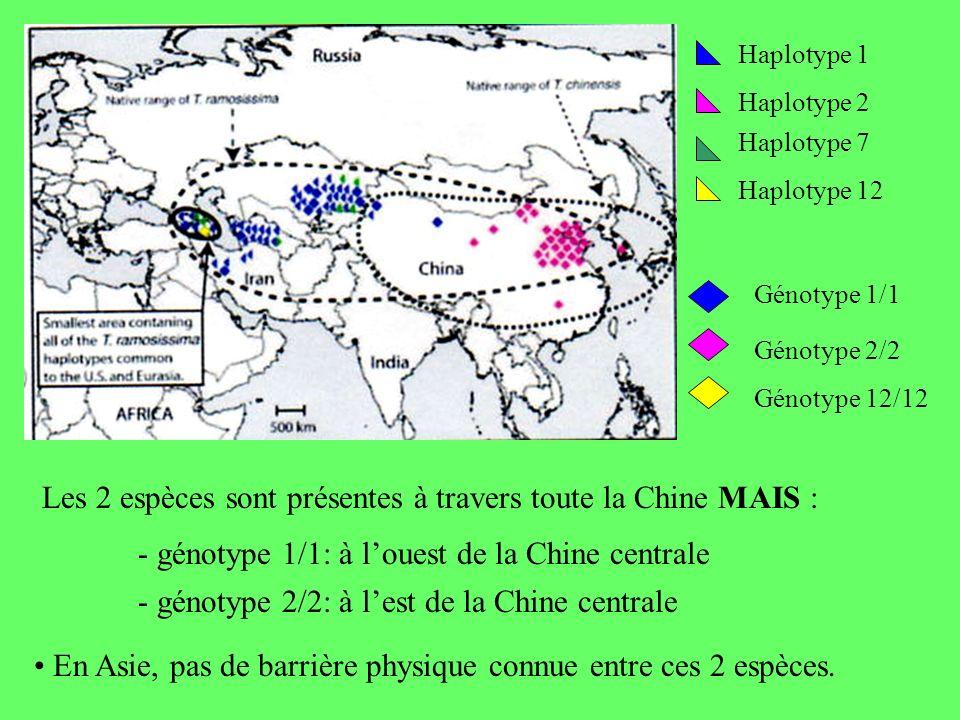 Les 2 espèces sont présentes à travers toute la Chine MAIS :