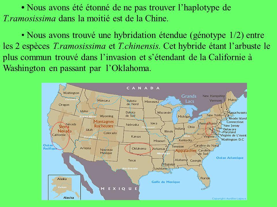 • Nous avons été étonné de ne pas trouver l'haplotype de T