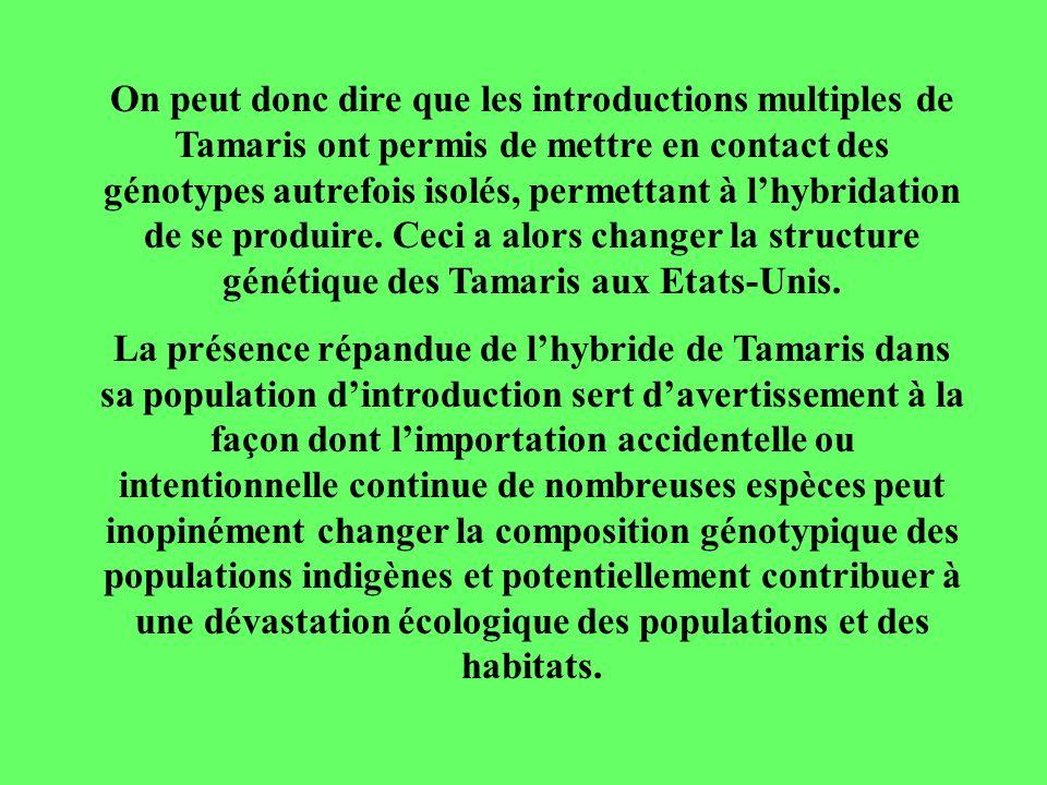 On peut donc dire que les introductions multiples de Tamaris ont permis de mettre en contact des génotypes autrefois isolés, permettant à l'hybridation de se produire. Ceci a alors changer la structure génétique des Tamaris aux Etats-Unis.