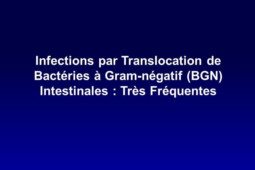 Infections par Translocation de Bactéries à Gram-négatif (BGN) Intestinales : Très Fréquentes