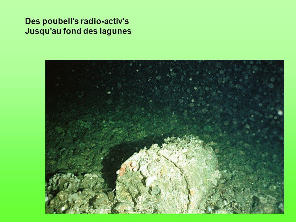 Des poubell s radio-activ s Jusqu au fond des lagunes