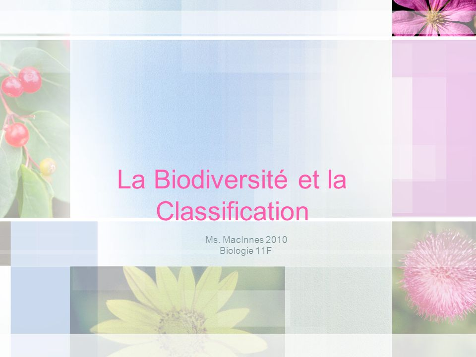 La Biodiversité et la Classification