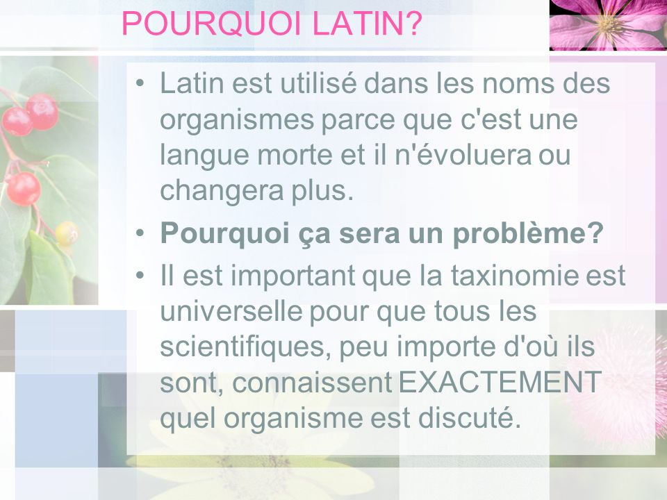 POURQUOI LATIN Latin est utilisé dans les noms des organismes parce que c est une langue morte et il n évoluera ou changera plus.