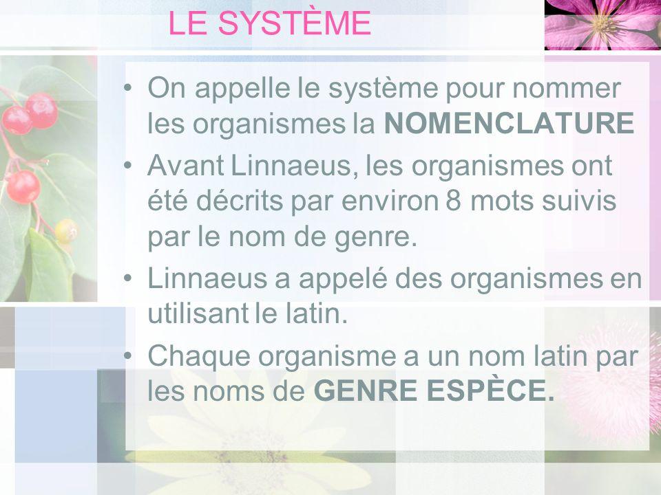 LE SYSTÈME On appelle le système pour nommer les organismes la NOMENCLATURE.