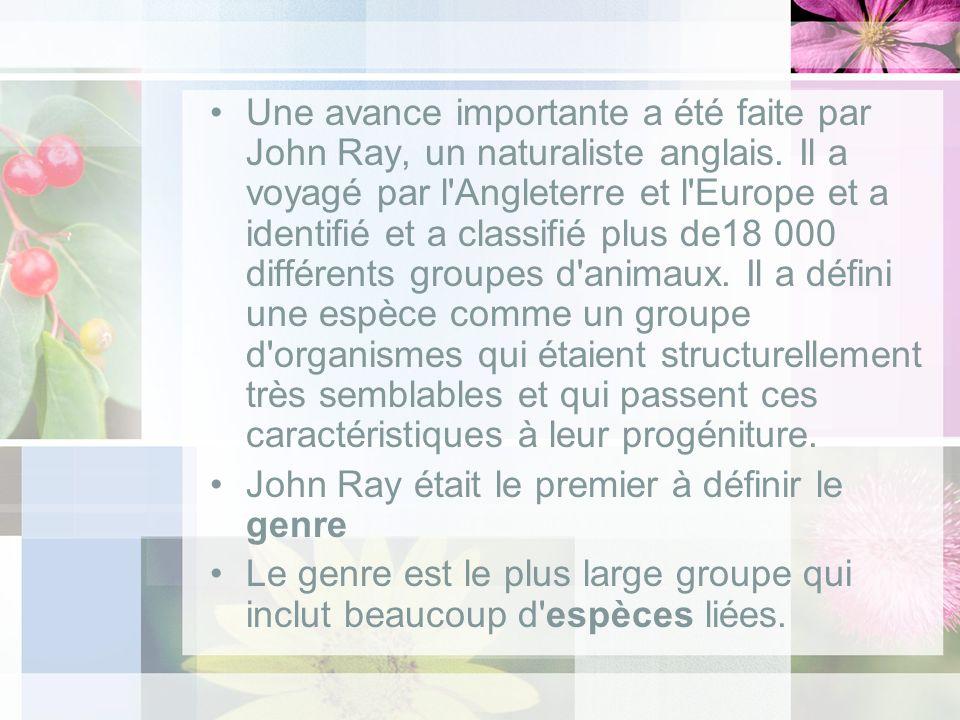 Une avance importante a été faite par John Ray, un naturaliste anglais