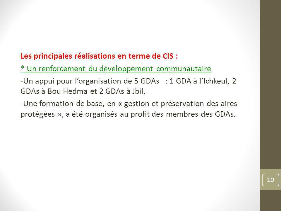 Les principales réalisations en terme de CIS :