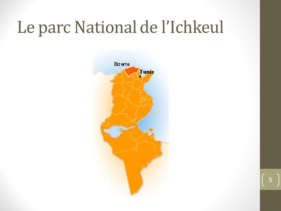 Le parc National de l'Ichkeul
