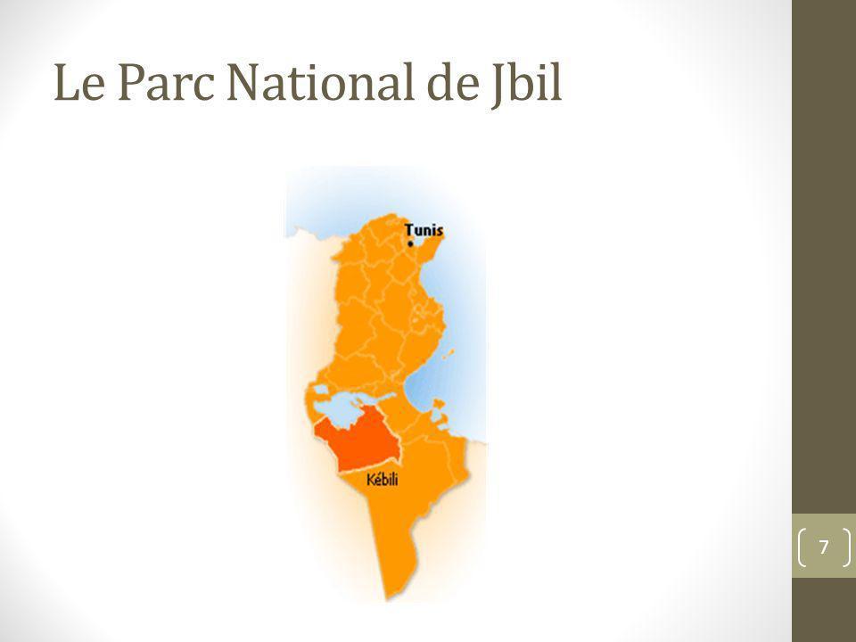 Le Parc National de Jbil