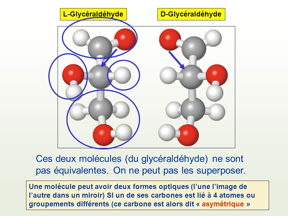 L-Glycéraldéhyde D-Glycéraldéhyde. Ces deux molécules (du glycéraldéhyde) ne sont pas équivalentes. On ne peut pas les superposer.