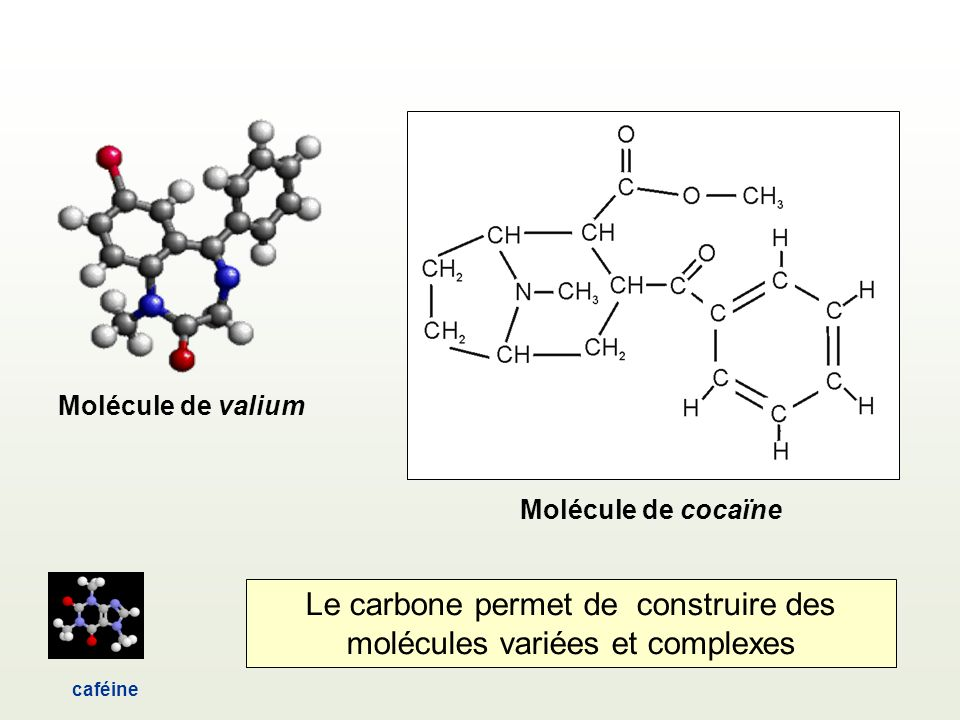 Le carbone permet de construire des molécules variées et complexes