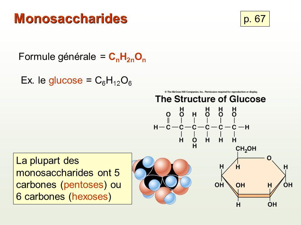 Monosaccharides p. 67 Formule générale = CnH2nOn