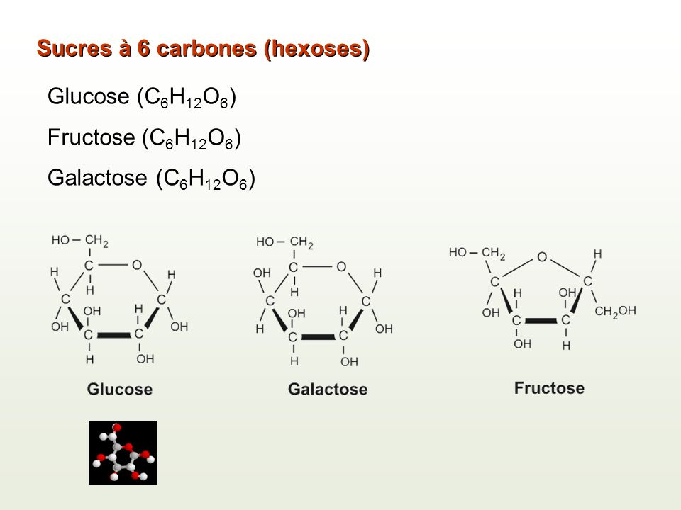 Sucres à 6 carbones (hexoses)